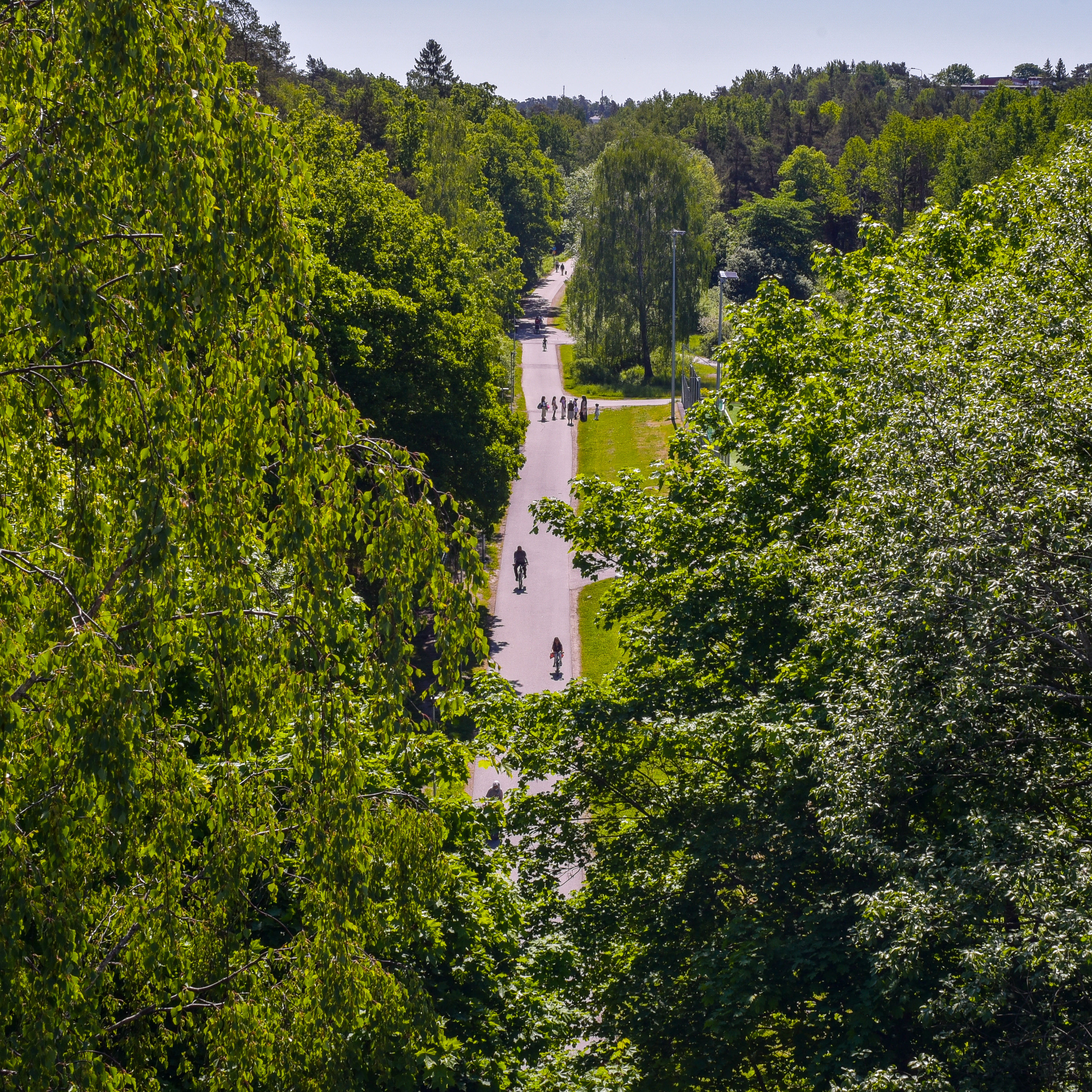 Gamla landsvägen som löper öst-västligt genom dalen Foto: Staffan Andersson